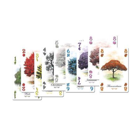 Bild Abacus Spiele