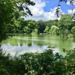 Schrevenpark - Johns Burger