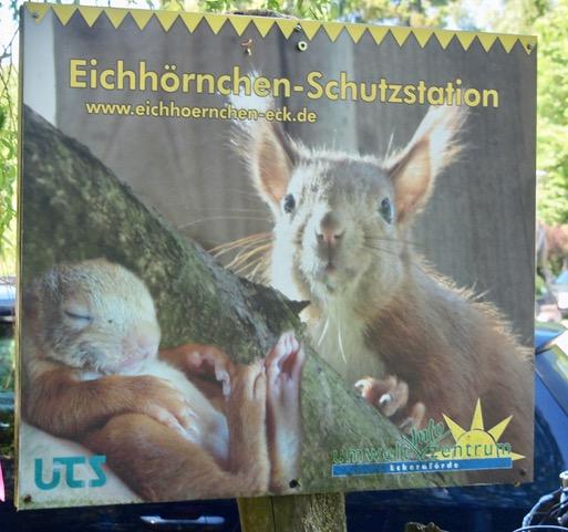 Eingang Eichhörnchenschutzstation Eckernförde