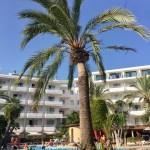 Mallorca, Cala millor, Hotel Marins Playa – Auf Reisen