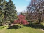 Alter botanischer Garten, Kiel
