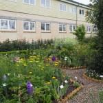 Blütenmeer - Universe Dänemark - Wissenschafts- und Erlebnispark