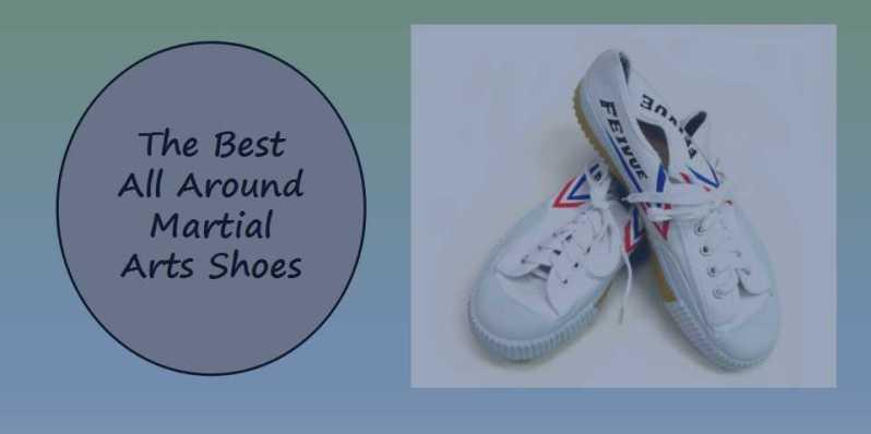 Top Martial Arts Shoes
