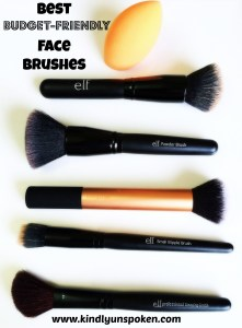 Best Budget Friendly Face Brushes