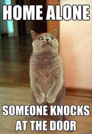 knocks on the door humor