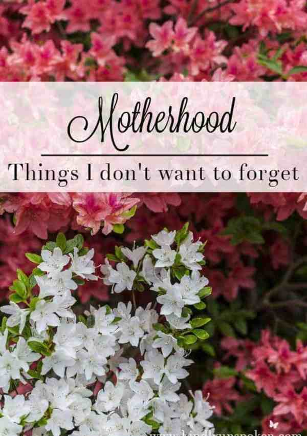 Motherhood-Things I Don't Want to Forget