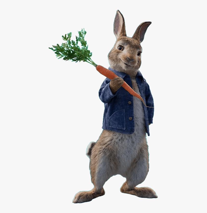Peter Rabbit Peter Rabbit Sony Pictures Animation Hd Png Download Kindpng