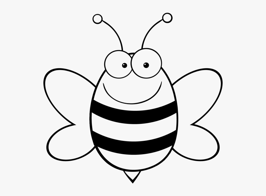 Cartoon Bee Vector Honey Bee Bumblebee Coloring Pages Hd Png Download Kindpng