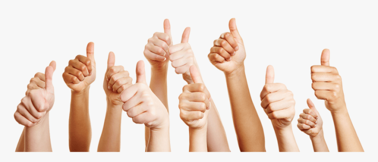 A Group Of Hands Giving The Thumbs Up Sign Showing - Group Thumb Up Png,  Transparent Png - kindpng