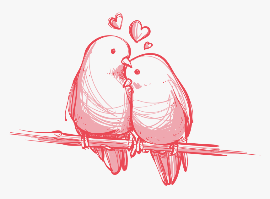Bird Valentine S Day Wedding Gift Wallpaper Simple Love Birds Drawing Hd Png Download Kindpng