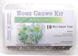 Home Grown Kit Broccoli
