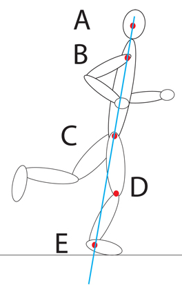 Insights into Great Running Posture