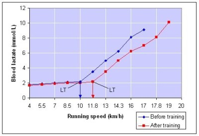How to Calculate Your Lactate Threshold