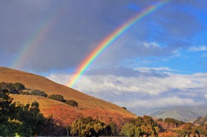 """""""I have set my rainbow in the clouds, and it will be the sign of the covenant between me and the earth."""""""