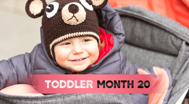 ToddlerMonthByMonth (Month)