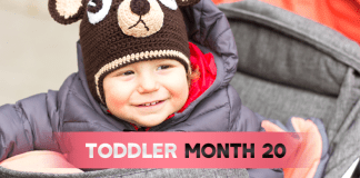 Toddler Month By Month - (Month 20)