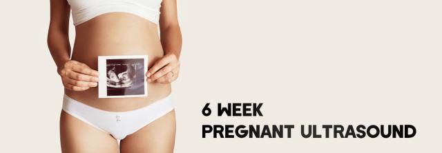 6 Week Pregnant Ultrasound