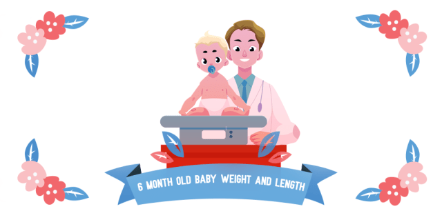 6 Month Old Baby Weight And Length