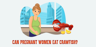 Can_Pregnant_Women_Eat_Crawfish_cover