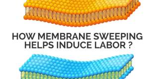 How Membrane Sweeping Helps Induce Labor?