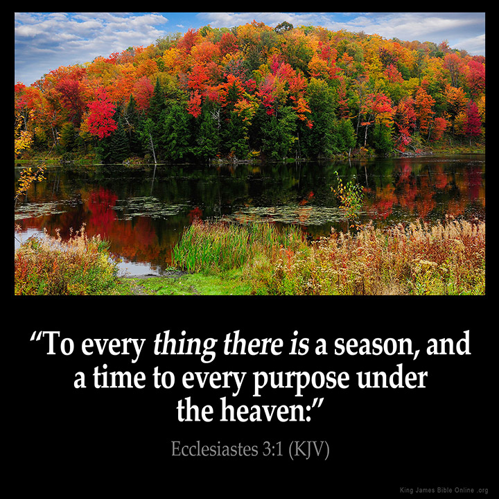 Ecclesiastes 3:1 Inspirational Image