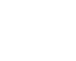 kingllavero_logo_nissan