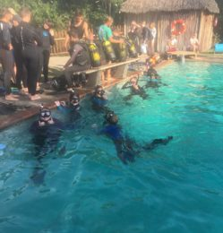 Pool – diving – July