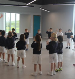 Wagtails body percussion (21)