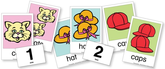Plural Flash Cards Kinney Brothers Publishing
