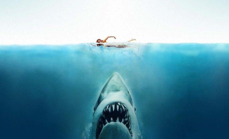 Die Besten Hai Filme