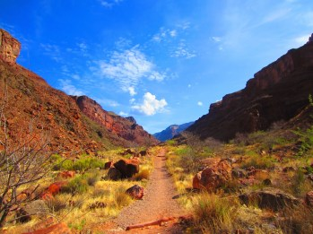The open trail