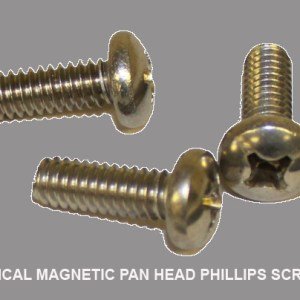 Typical Magnetic Pan Head Phillips Screw