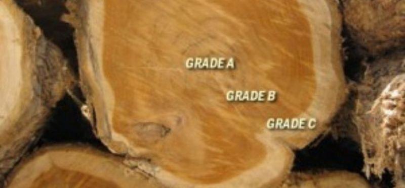 kayu jati yang berdasarkan grade