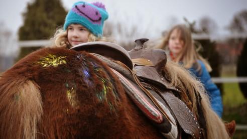 Kennt ihr schon unseren Kindergeburtstag auf der Ranch?