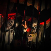 The Alton Towers Dungeon - New for 2019!