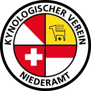 kvn_logo