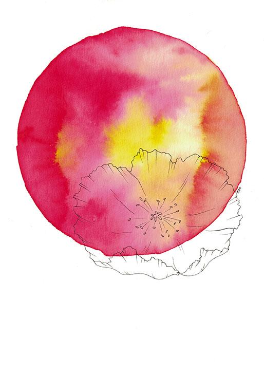 Bloom #2 - Illustration by Kira Bang-Olsson