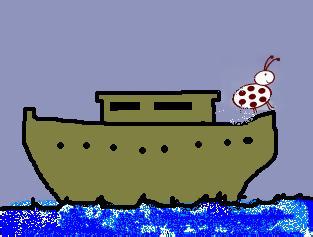 a bug on an ark