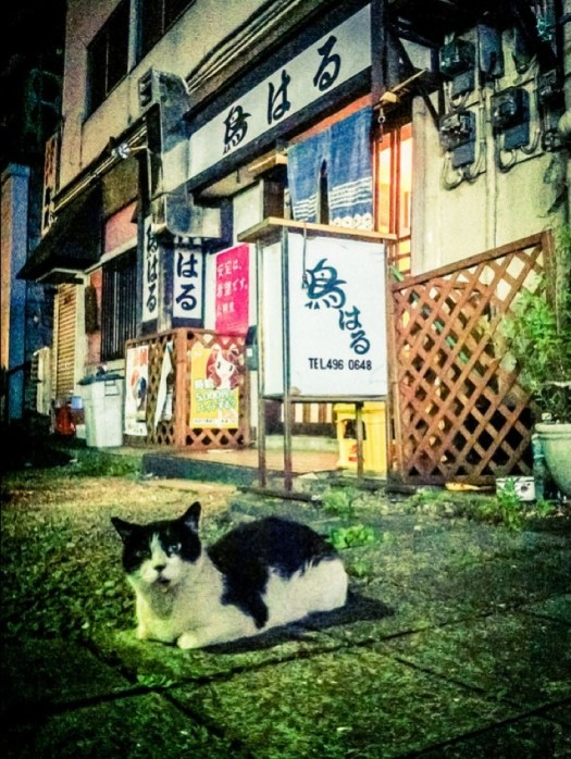 Japon 2013