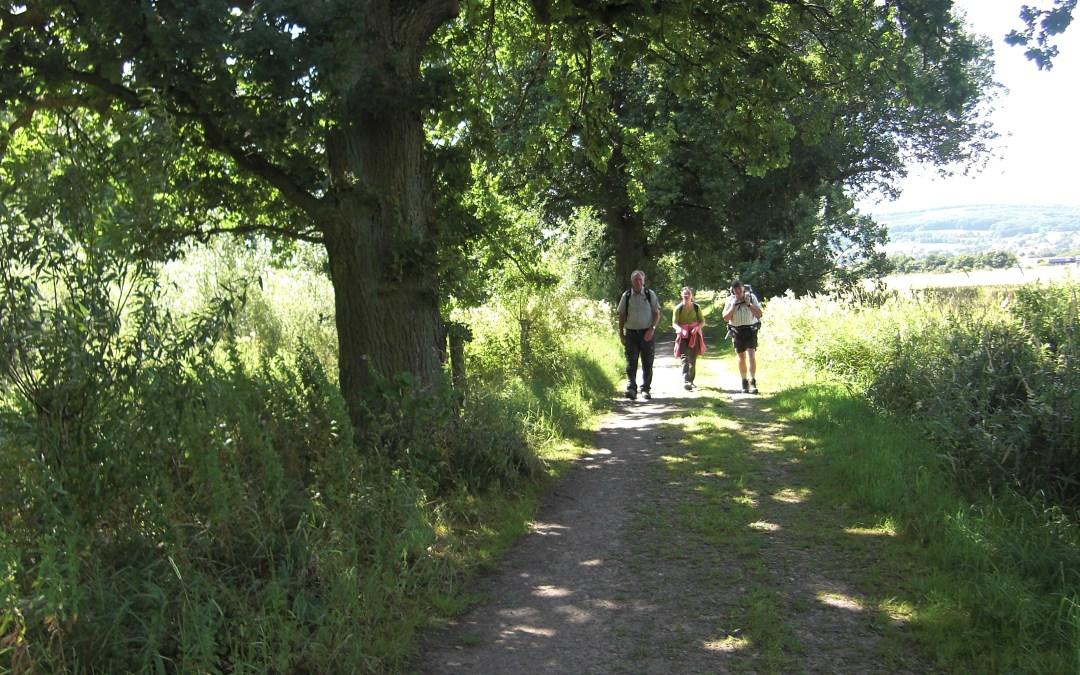 Von Pilgern bis Gregorianik: Diverse Tour-Angebote auf dem Sigwardsweg