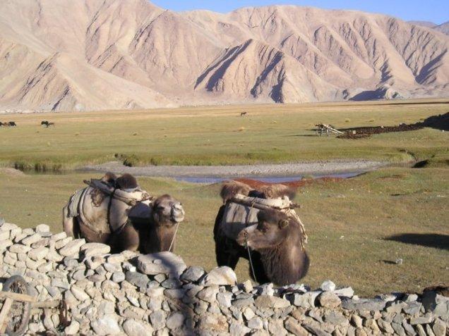 sejour-kirghizie-chine-kashgar-9