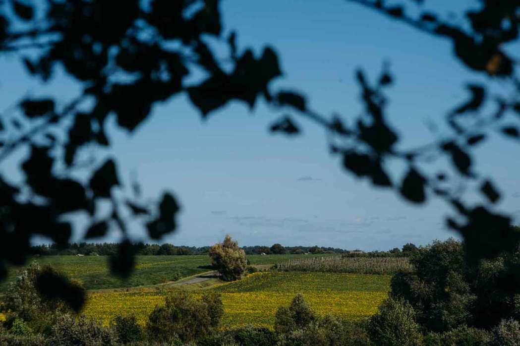 поле, Украина