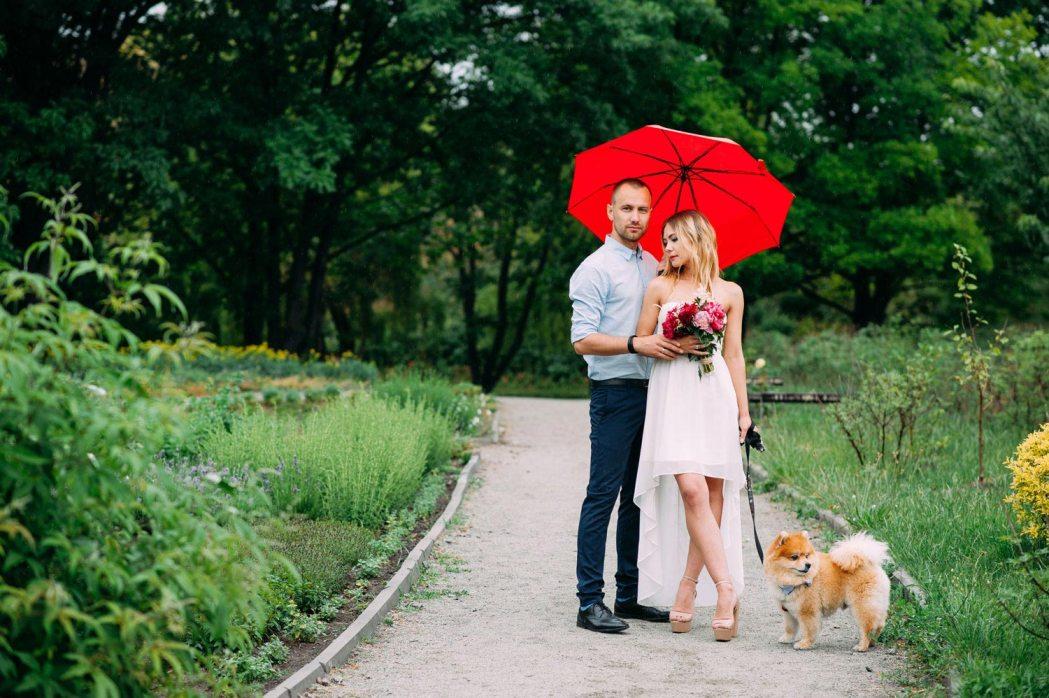 Свадьба в ботаническом саду с собачкой