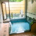 県外民にはあまり知られていない秘境の秘湯「梅ヶ島温泉」を訪れてみました。