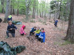 outdoor learning in the woods 054