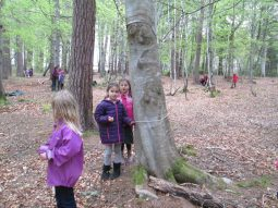 outdoor learning in the woods 064