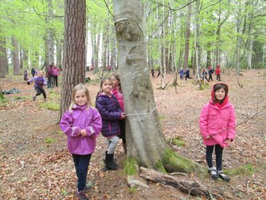 outdoor learning in the woods 065