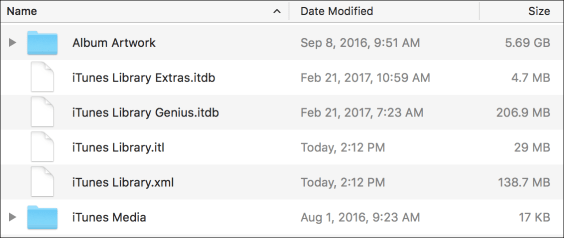 Itunes library files