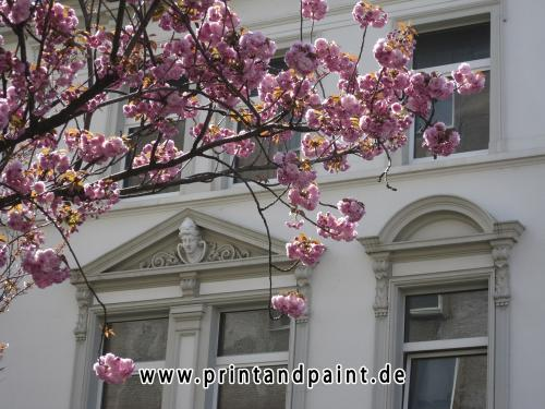 184-Renate-Zimmermann-dikau-IMG_5535-1v1