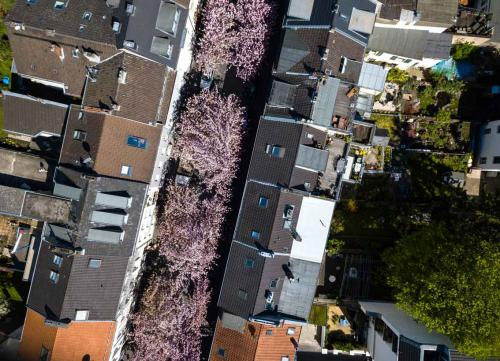 124-A.Sartor-2018-wett-Altstadt-0001